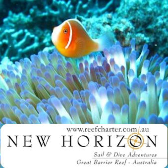 Follow on TWITTER @new_horizon !