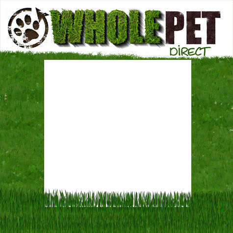 Follow on TWITTER @WholePetDirect !